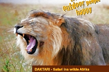 Daktari in Uganda (17 Tage)mit 4x4 MietwagenAuf Safari mit Beat EttlinUganda at it's best!